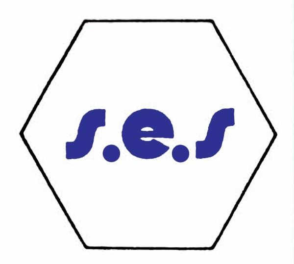 S900A Abdeckung / Leerbaustein mit s.e.s Logo